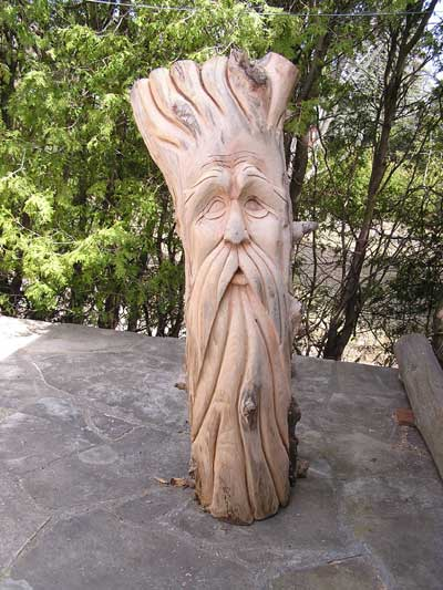 Chainsaw carving pictures